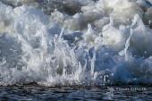 foamies in the shore break